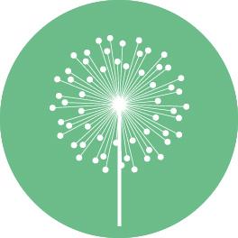 Birmingham Logo & Branding