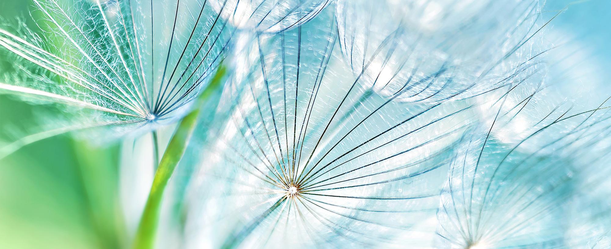 Image result for design images