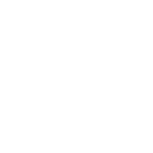 Marc Shore + Associates LLC
