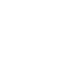 Twin Construction Inc.