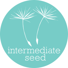 Intermediate Seed Local SEO Package