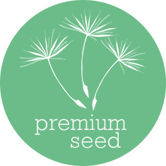 Premium Seed Local SEO Package
