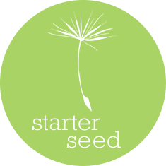 Starter Seed Local SEO Package