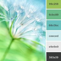 dandelion marketing color scheme