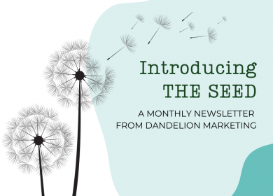 The Seed - Newsletter by dandelion marketing LLC