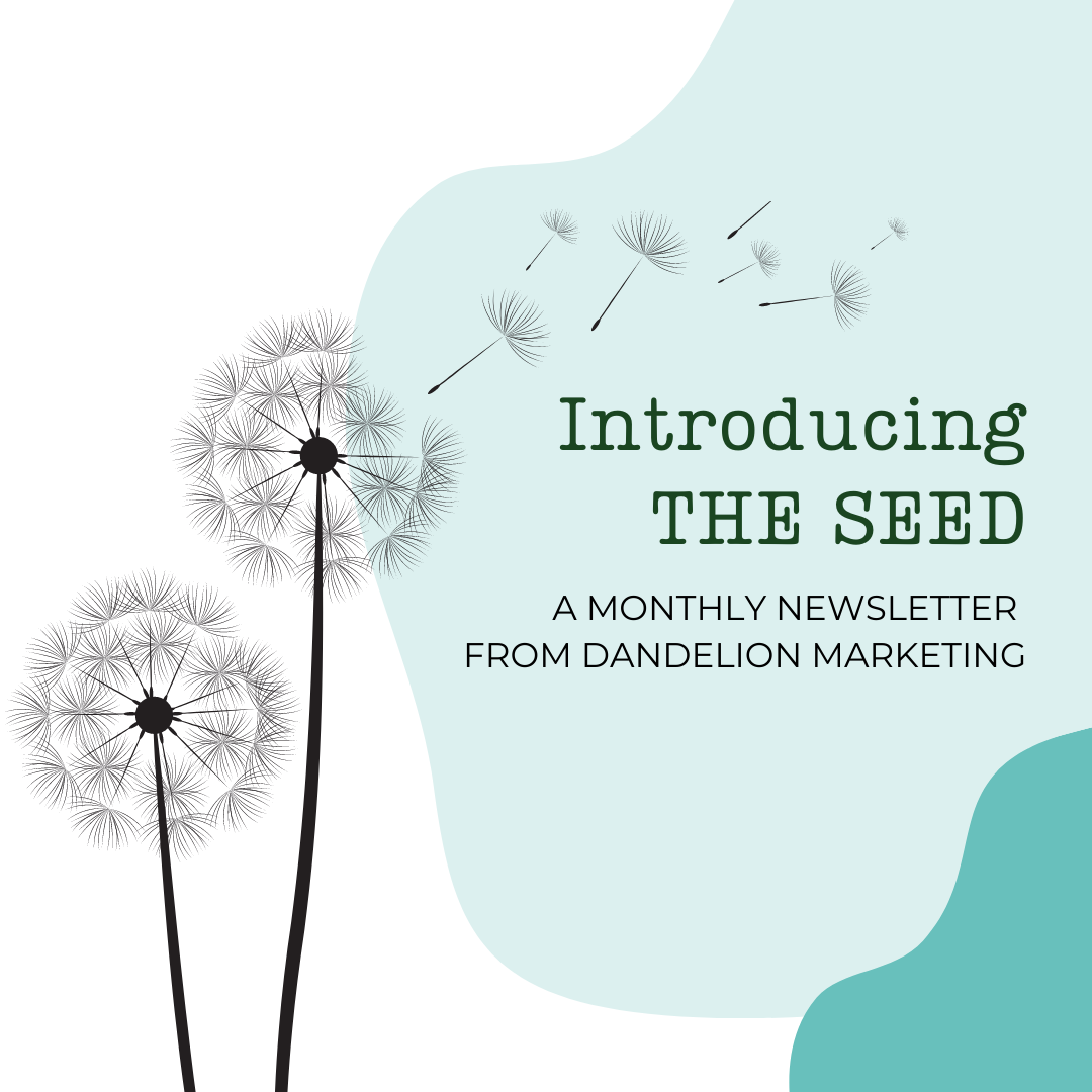The Seed - Newsletter by dandelion marketing LLC