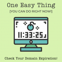 One Easy Thing (You Can Do Right Now): Check Your Domain Expiration!